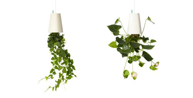 alles gute kommt von oben gr nes im sky planter tipps vom einrichter. Black Bedroom Furniture Sets. Home Design Ideas